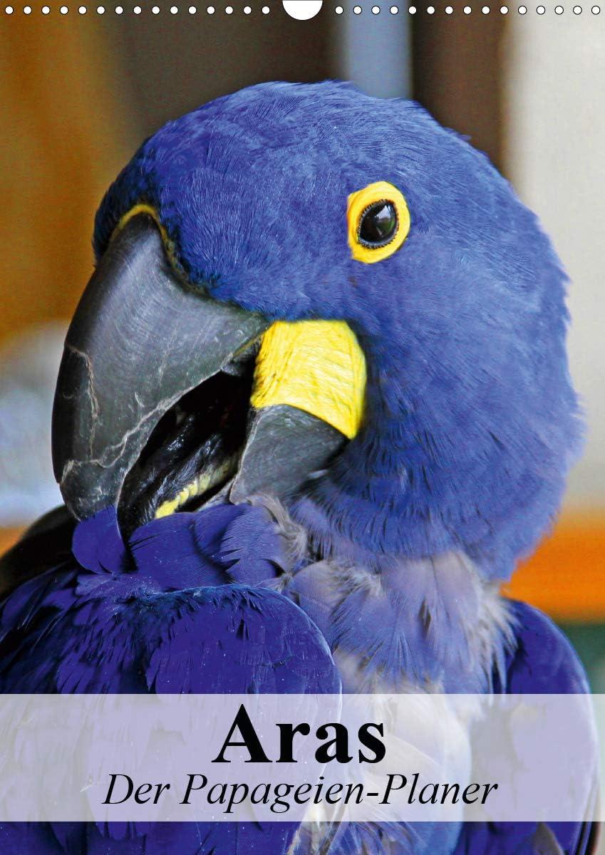 Aras. Der Papageien-Planer Wandkalender hoch 2021 A surprise price is realized A3 DIN Phoenix Mall