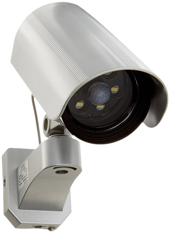 ヘアシミュレートする医学DAISHIN(大進) カメラに見えるセンサーライト DLB-K500 LED白色
