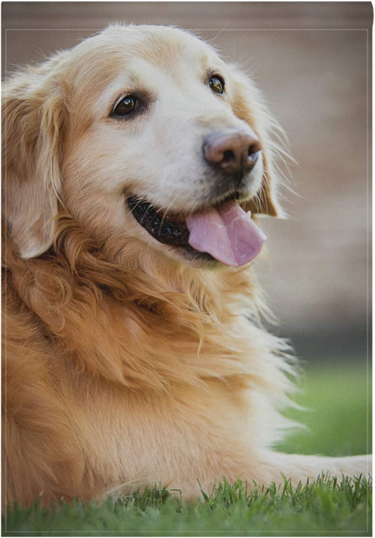 Oklahoma City Mall BlueViper Golden Retriever Dog Garden Flag x 18 12 Inch Kansas City Mall Banner D