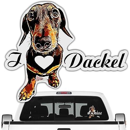 Rauhaardackel Dachshund Pfoten Weg Kleiner Auto Aufkleber Hundeaufkleber Reflektierend Reflective Siviwonder Auto
