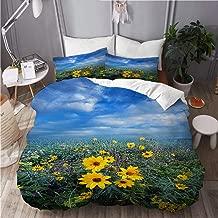 COVASA Duvet Cover Set, Daisy Flowers Autumn Travel Journey Life Country Living Heaven Spring Garden Sunrise Landscape, Decorative 3 Piece Bedding Set with 2 Pillow Shams