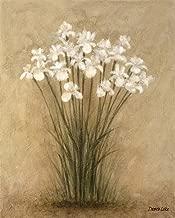 Floral F by Debra Lake Art Print, 8 x 10 inches
