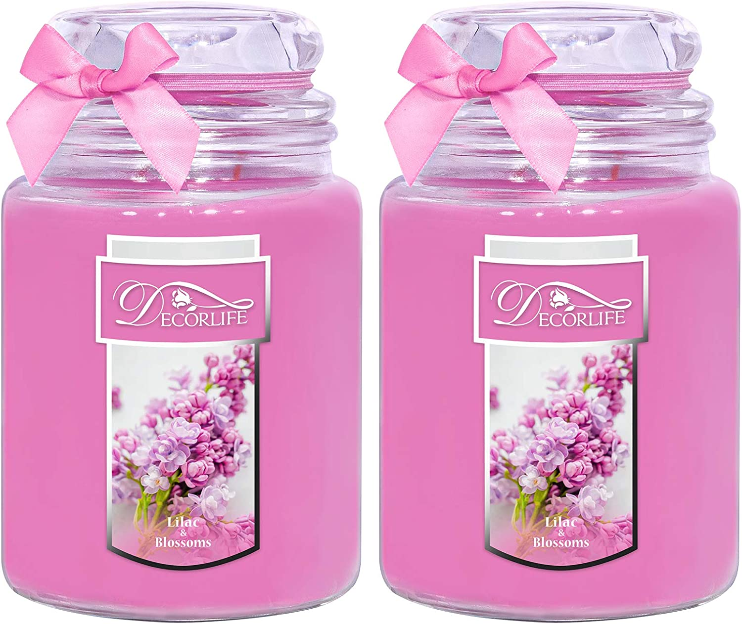 Decorlife 2-Pack Scented Candle, 22 oz Each Large Candle Jar, Nature Soy Wax Two Wicks with Over 100 Hrs Even Burn time, Candles Set for Home and Women (Lilac Blossoms)