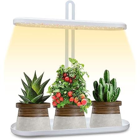 GoGrow Grow Light LED Grow Lights for Indoor Plants, New Generation Desk Grow Light with Timer, Plant Light, Grow Lamp Growing Lights Full Spectrum UV Grow Lights Grow Light