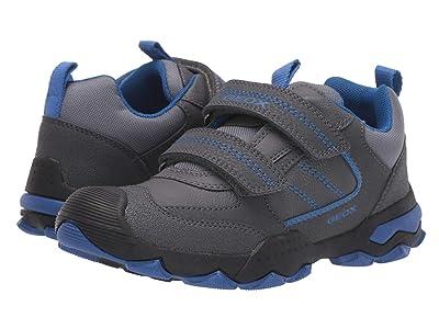 Geox Kids Jr Buller 1 (Big Kid) (Dark Grey/Royal) Boys Shoes