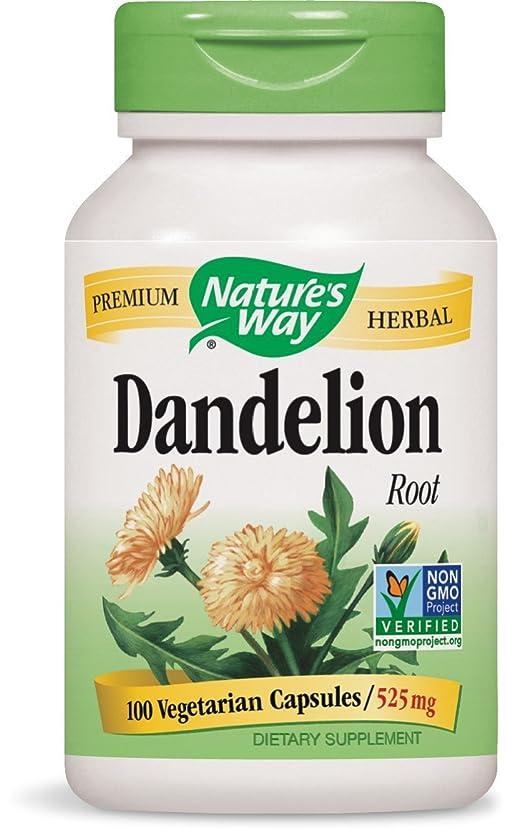 具体的にごみスイッチ海外直送品 Nature's Way Dandelion, Root 100 Caps