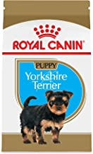 Royal Canin Breed Health Nutrition Yorkshire Terrier Puppy Dry Dog Food