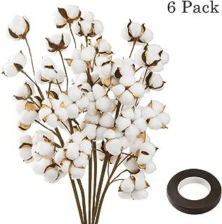 JOYPEA Cotton Stems - 6 Pack 10 Balls Per Stem - 23 Inch Farmhouse Display Filler-Foral Decoration