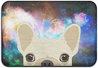 Soft Non-slip Funny French Bulldog Print Bath Mat Coral Rug Door Mat Entrance Rug Floor Mats For Front Outside Doors Entry...