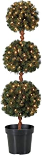 Best pre lit topiary ball Reviews