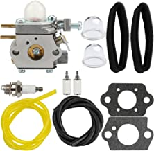 Hipa WT-973 Carburetor + Tune Up Kit Air Filter for MTD Remington RM2510 RM2520 RM2560 RM2570 RM2599 Murray M2500 M2510 M2550 H2500 String Trimmer Brushcutter