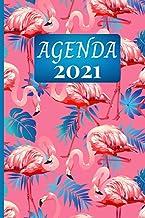 Agenda 2021: semainier de Janvier à Décembre 2021 pour étudiant et professionnel, couverture série flamand rose . (French ...