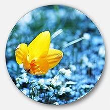 """Designart """"Solitary Yellow Flower on Blue Modern Flower"""" Metal Wall Art, 23 x 23"""", Yellow/Blue"""