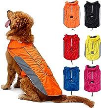 Suchergebnis Auf Für Hunde Sicherheitsleine