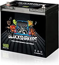 Best kinetic subwoofer price Reviews