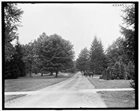 Vintography 8 x 10 Ready to Frame Pro Photo of Driveway Michigan Agricultural College Michigan State University East Lansing Mich 1913 Detriot Publishing 65a