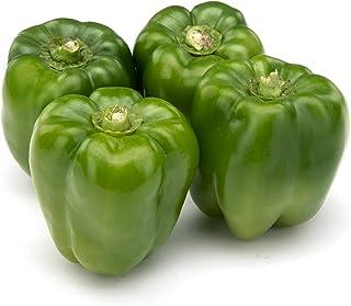 Fresh Capsicum - Green, 500g