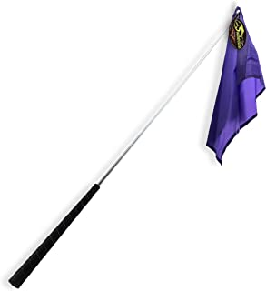 Best horse training stick with flag Reviews