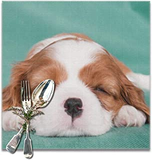 honshangmao Table Placemats Happy Dog (11) Set of 6 Square 12x12 Inch Placemats Table Pad Place Mat for Kitchen