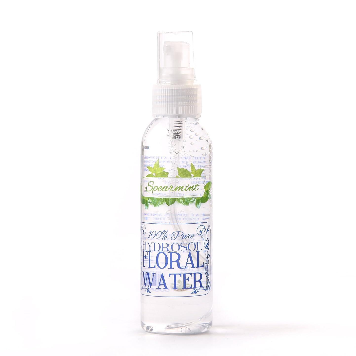 高める静脈忌まわしいSpearmint Hydrosol Floral Water With Spray Cap - 250ml