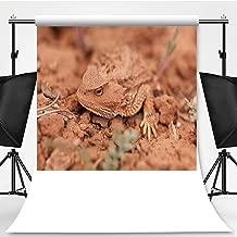 Camouflaged Wild Desert Horned Lizard Cedar Mesa Utah Theme Backdrop Cartoon Backdrops Photography Backdrop,051558,10x20ft