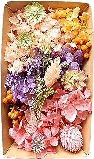 カラフルフラワー福袋 ハーバリウム 花材 材料 アロマワックスサシェ プリザーブドフラワー ドライフラワー アジサイ (カラフル)