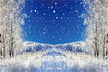 Leowefowa Winter Snowscape Backdrop for Photography 7x5ft Vinyl Snowy Park Avenue Road Lamps Trees Falling Snow Background Christmas Party Banner Child Adult Photo Shoot Props Wallpaper