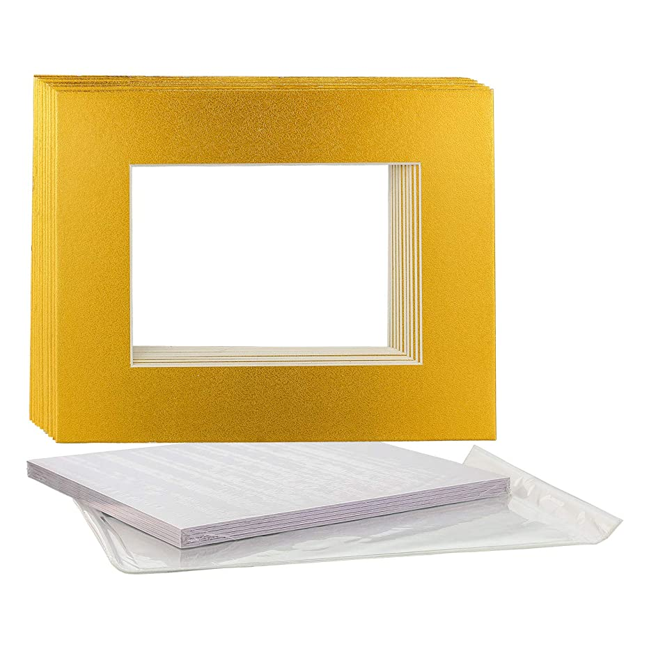 U.S. Art Supply 11X14 Imitation Gold Leaf Photo Mat Board Set - Mats, Backboard & Clear Bags - 10 Sets