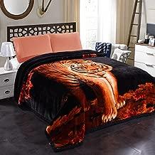 JML 10 Pounds Heavy Plush Soft Blankets for Winter, Korean Style Mink Velvet Fleece Blanket – 2 Ply A&B Printed Raschel Bed Blanket 85