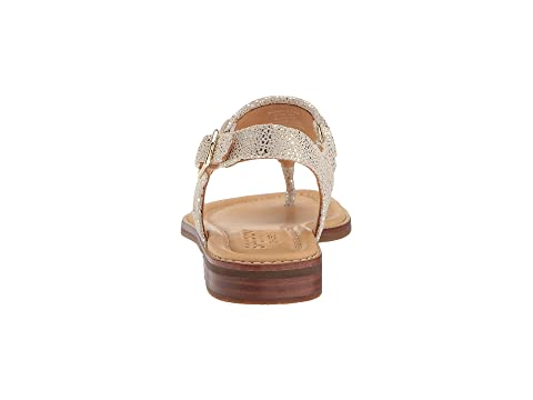 BlackPlatinumTurquoise Sperry Sparkle Abby Abby Sparkle BlackPlatinumTurquoise Sperry Sparkle Sperry Sperry BlackPlatinumTurquoise Abby wBg4w