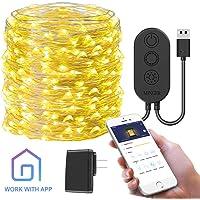 Minger 33-Foot 100LED 10m Govee App-Controlled String Light