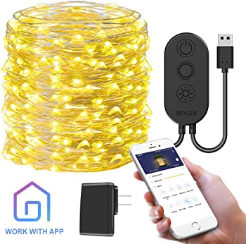 Minger 33-Foot 100LED 10m Govee App-Controlled String Light