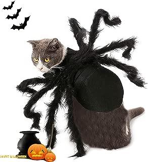 extra large dog spider costume