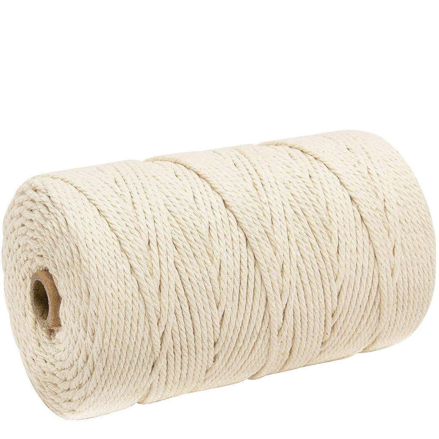 コントラスト合図追い越すナチュラルコットン マクラメ ロープ 紐 糸 手作り編み糸 綿 DIY壁掛けハンガークラフト編みコードロープ 3㎜ 200m (ライスホワイト)