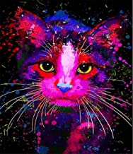 Painting by Numbers DIY Oil Painting Colorful Cat Canvas Print Wall Art Decoration