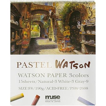 ミューズ パステル紙 パステルワトソンブック P2 190g ホワイト、ナチュラル、グレー 15枚入り PSW-2622 P2