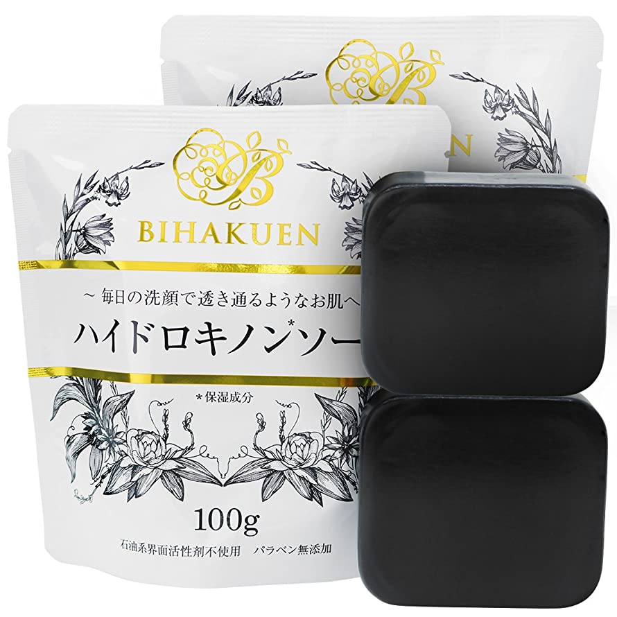 そこから必要条件冷凍庫【2個セット】(BIHAKUEN)ハイドロキノンソープ100g (2個)