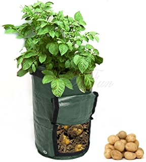 Wuyue Hua 2pcs Planting Potato Grow Bags Waterproof PE Gardening Vegetable Planter Container 10 Gallon with Flap