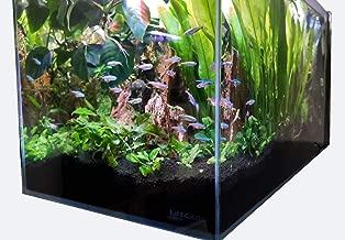 Lifegard Aquatics Lifegard Ultra Low Iron Glass Crystal Aquarium with Built-in Side Filter 45° Beveled Edge 14.2 Gallons, Clear