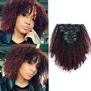Sassina Seamless Two Tone Afro Kinky Curly Human Hair Extensions Double Wefts Clip on Remi Hair Natural Black Fading into Cherry Wine 120 Grams-Set With 7 Pieces 17 Clips AC TN99J 14 Inch