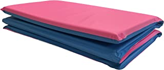 Peerless Plastics Toddler KinderMat in Blue/Pink With Pillow by PEERLESS PLASTICS