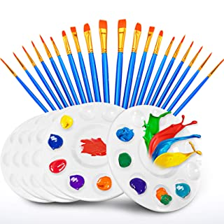 Best 20 Pcs Paint Pallet Brushes with 6 Pcs Paint Trays for Kids and Adults to Painting or Have a Birthday Painting Party Review
