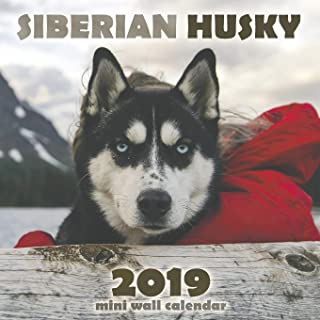 The Siberian Husky 2019 Mini Wall Calendar