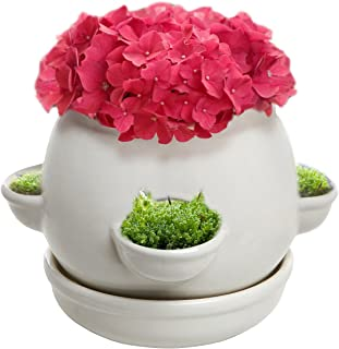 Decorative 4 Side Openings Design White Ceramic Plant Flower Container Pot with Saucer