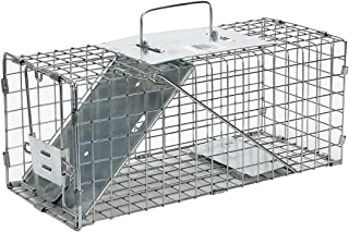 Havahart Small Professional Style One-Door Animal Trap for Squirrel, Rabbit, Skunk, and..
