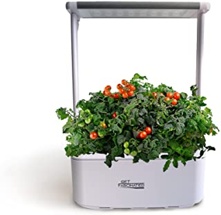 Sponsored Ad - Get Fascinated - Mini Indoor Plants Hydroponics Growing System, Auto-Watering Smart Garden with Led Light f...
