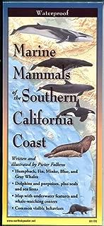 Marine Mammals of The Southern California Coast