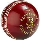 KOOKABURRA County Special Cricket Ball | Millet Sports