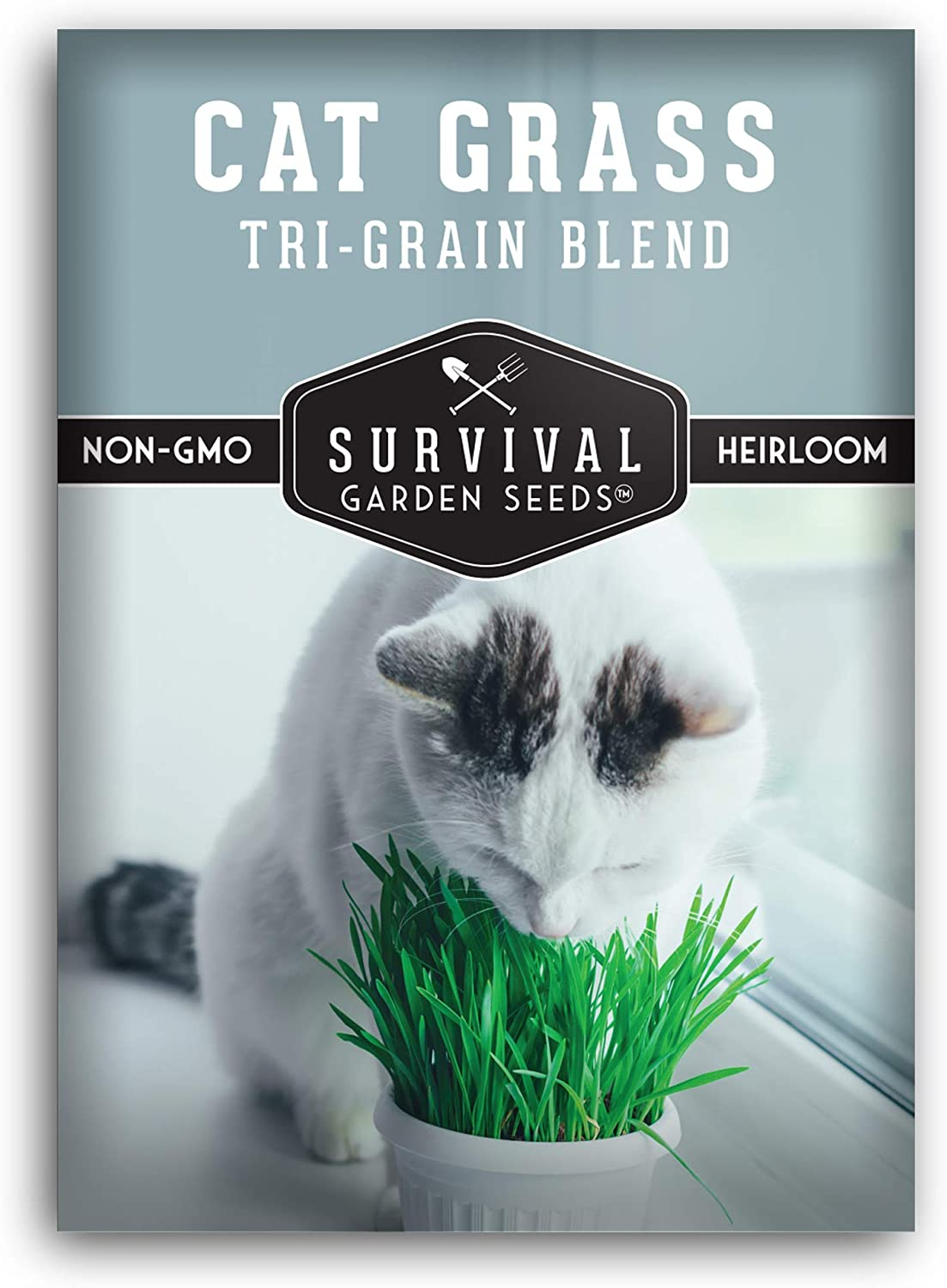 Survival Garden Seeds - Cat National uniform free shipping Grass Packet Seed Free shipping on posting reviews for wit Planting