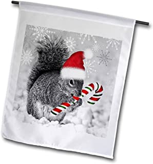3dRose fl_150177_1 This Cute Christmas Squirrel Has a Candy Cane and a Santa Hat in Snow Covered Winter Landscape Garden Flag, 12 by 18-Inch